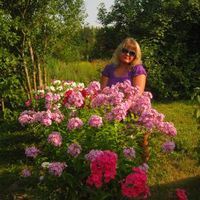 Ксения, 32 года, Рак, Санкт-Петербург