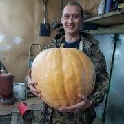Рамиз, 36, г.Пенза