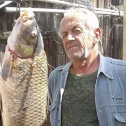 николай, 62, г.Астрахань